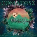 BigCat: Comatose LP Box Art Cover