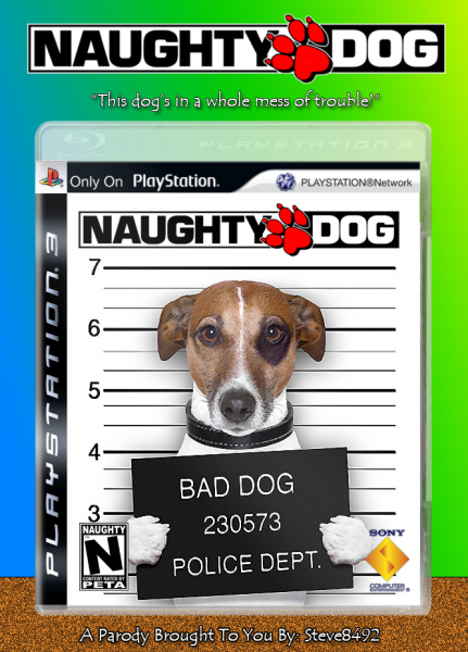 Naughty Dog box cover