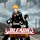 Bleach Heat The Soul 8 Box Art Cover